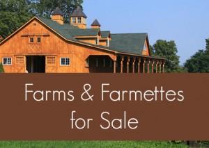 Farms for Sale Near Lexington Virginia